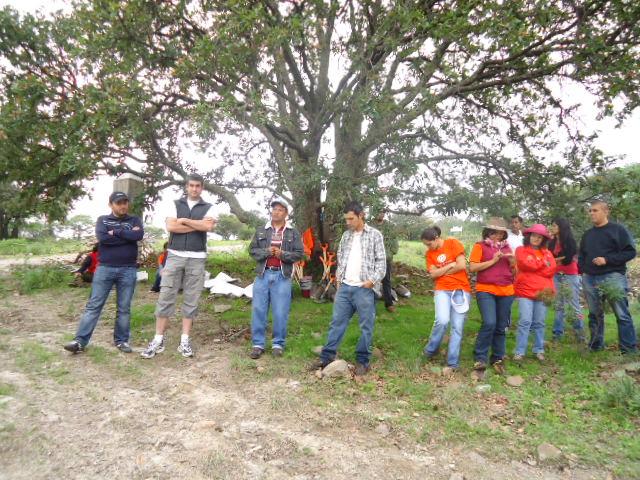 Feher & Feher participa en la reforestación 2011